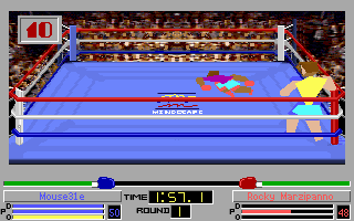 Image 4D Boxing