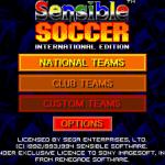 Sensible Soccer International