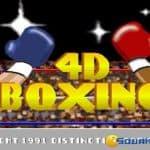 4D Boxing