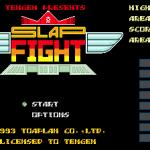 Slap Fight MD